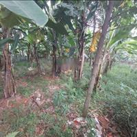 Bán nhanh lô đất tại xã Cổ Đông, thị xã Sơn Tây, Hà Nội, diện tích 102m2