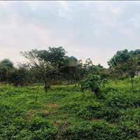 Bán đất nghỉ dưỡng tại Cổ Đông - Sơn Tây, view cánh đồng, mặt tiền rộng, gần Asean resot