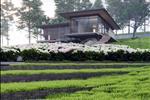 Dự án Sakura Kiwuki 2 Village - ảnh tổng quan - 8