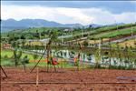 Dự án Sakura Kiwuki 2 Village - ảnh tổng quan - 23