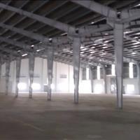 Cho thuê nhiều nhà xưởng trong khu công nghiệp tại Cần Đước - Long An