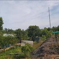 Bán đất chính chủ tại Bông Trang, Thạnh Đức, Gò Dầu, Tây Ninh giá rẻ