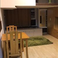 Cho thuê căn hộ mini 1 phòng ngủ, quận 7, 30m2