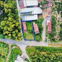 Bán lô đất góc 2 mặt tiền Hương lộ 7 xã Bình Lợi, huyện Vĩnh Cửu