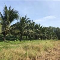Cần bán gấp lô đất xã Lương Hoà, Bến Lức, tỉnh Long An, giá đầu tư