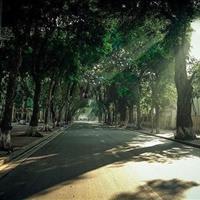 Bán nhà mặt phố Phan Đình Phùng, Ba Đình, 143m2, mặt tiền 8m, vỉa hè rộng 15m