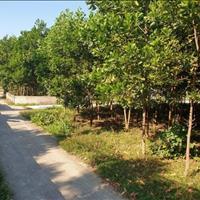 Bán lô đất nằm tại Cổ Đông, Sơn Tây, diện tích 636.6m2 giá chỉ hơn 3 triệu/m2