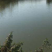 Chính chủ cần bán 1.864m2 đất thổ cư view hồ tuyệt đẹp tại, Quốc Oai, Hà Nội chỉ 3.2 triệu/m2