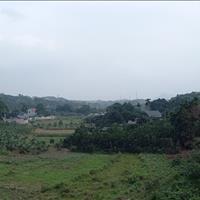 Cần bán gấp 3000m2 đất thổ cư view cánh đồng tuyệt đẹp tại Lương Sơn, Hòa Bình chỉ 700 nghìn/m2
