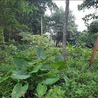 Cần bán lô đất 1.222m2 đất thổ cư gần trường học Spring Hill tại Quốc Oai, Hà Nội chỉ 2.3 triệu/m2