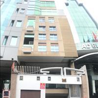 Tòa nhà văn phòng giá rẻ, DT đa dạng 20m2- 60m2, đường Nam Quốc Cang, Phường Phạm Ngũ Lão, Quận 1