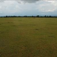 Bán đất vườn sổ đỏ gần biển Bình Thuận, nhiều vị trí đắc địa, tiềm năng sinh lời sao