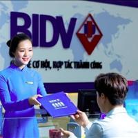 Ngân hàng BIDV thanh lý duy nhất 15 lô đất nền ngay mặt tiền đường Mô xoài, liền kề Vingroup