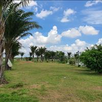 Đất Phú Hội, Nhơn Trạch nằm trên đường 25C kết nối trực tiếp với sân bay quốc tế Long Thành