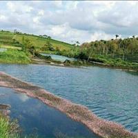 Forest Hill- đất nền sổ sẵn trung tâm TP Bảo Lộc - Lâm Đồng giá chỉ 390 Triệu /100m2 ,