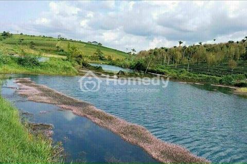 Forest Hill - đất nền sổ sẵn trung tâm TP Bảo Lộc - Lâm Đồng giá chỉ 390 triệu/100m2