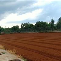 Bán 13.500m2 đất công nghiệp tại Thị trấn Lai Cách, Cẩm Giàng, Hải Dương