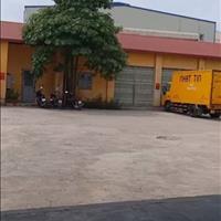 Bán 4335m2 đất dịch vụ thương mại Kim Động - Hưng Yên có thể làm nhà xưởng, kinh  doanh