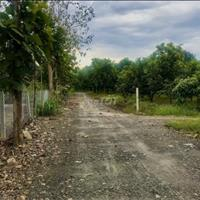 Bán 1000m2 đất vườn - Cạnh đường cao tốc - Giá chỉ 390 triệu