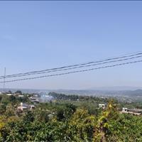 Đất nghỉ dưỡng Tầm Xá Đông Thanh 1800m2, 40m mặt đường view đẹp ngay TT xã Đông Thanh