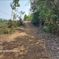 Bán đất Kim Bôi 8ha đất RSX bằng phẳng làm trang trại đầu tư,ô tô vào tận đất