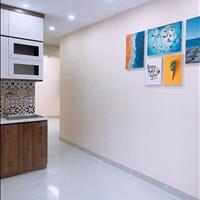 Bán CH chung cư mini Nguyễn Lương Bằng 35-60m2 nhận nhà ngay, đầy đủ nội thất, tách sổ hồng ĐSH