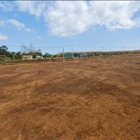 Bán đất nền ở khu dân cư Chư Păh – Thị trấn Phú Hòa – Gia Lai, 185m2 - Giá 499tr
