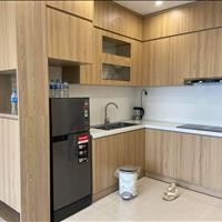 Cho thuê Full đồ 6tr5 căn 1PN 46m2 Vinhomes Smart City