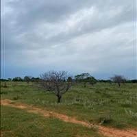 Vài lô đất nông nghiệp hồng thái mặt tiền đường liên huyện giá ưu đãi Lh 0938..67..79..09 Hiền