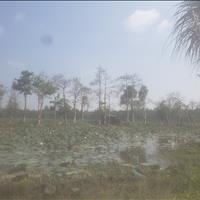 Bán 6 công đất Hàng Gòn, TP Long Khánh giá rẻ nhất