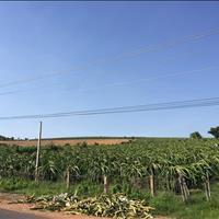 Bán 4578m2 đất nông nghiệp hồng thái gần đường liên huyện liên xã chỉ 70k/m2 Lh 0938..677..909 Hiền