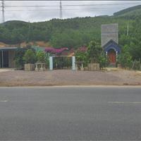Đất mặt tiền Quốc lộ 1A, Bùi Thị Xuân Quy Nhơn, 342m2 chỉ 1,8 tỷ