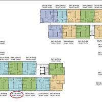 Căn hộ Penthouse C- SkyView thông tầng 35, 36 (130m2 - 180m2) khu Chánh Nghĩa - Thủ Dầu Một