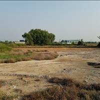 Bán đất vườn đường 367 xã Tân Thạnh Đông Củ Chi