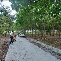 Đất sào Đồng Phú giá đầu tư, sổ hồng cầm tay, liên hệ