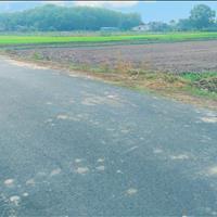 Bán lô đất vườn chính chủ xã Trung Lập Hạ, diện tích 1000m2, giá chỉ 1 tỷ 750tr, sổ hồng riêng