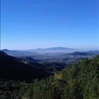 Đất Đà Lạt - Lâm Đồng view cực đẹp, 2.5ha tổng giá chỉ 700tr có thương lượng!