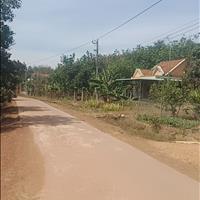 Chính chủ bán đất Bình Phước giá 500 triệu 1196 m2