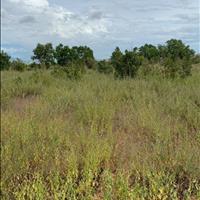 Bán 9284m2 đất nông nghiệp hồng thái, bắc bình có đường nhà nước chỉ 696 triệu Lh 0938 67 7909 Hiền