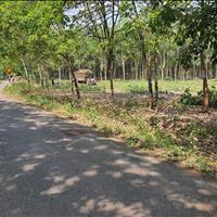 Bán đất Tân Hưng, Đồng Phú, 17.5m x 68m mặt tiền đường liên xã Tân Hưng - Tân Phước, gần trường