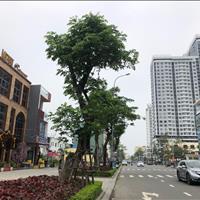Bán lô đôi mặt tiền Trần Hưng Đạo, phường An Hải Tây, Sơn Trà, Đà Nẵng