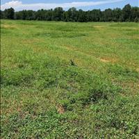 Bán 9000m2 đất nông nghiệp hồng thái mặt tiền đường liên xã giá chỉ 150k/m2 Lh 0938 677. 909 Hiền