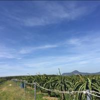 Bán 3.4 mẫu đất Tân Tiến, thị xã LaGi chưa qua đầu tư