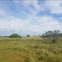Bán đất xã Hồng Thái huyện Bắc Bình 9185m2 giá 642 triệu đất có sổ đỏ sẵn