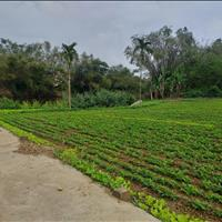 Bán đất xã Đại Nghĩa, huyện Đại Lộc cạnh hồ sinh thái, đường bê tông 2,5m, 150m2, giá 290 triệu