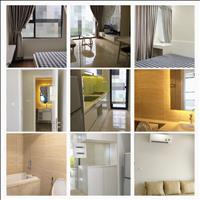 Hot hot, cho thuê căn hộ chung cư Vinhomes D' Capitale với giá siêu rẻ