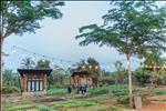 Dự án Golden Light - Mang Yang Town - ảnh tổng quan - 8