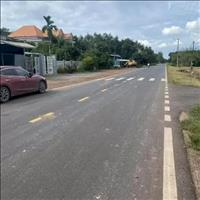 Bán (2 mẫu 20.000m2, 165 triệu/sào) mặt tiền đường quốc lộ 22m, thổ cư sổ hồng riêng