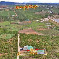 Bán đất Hồ Tây thị trấn Di Linh, view siêu đẹp, giá siêu rẻ, mới nhất tháng 4/2021