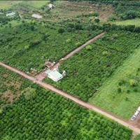 Mở bán dự án đất nền Đà Lạt, chỉ cọc 100tr, lô 200m2 trong đó có 75m2 thổ cư view đồi cafe Mê Linh